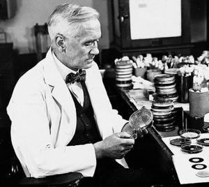 Alexander Fleming tropieza con Penicillium notatum