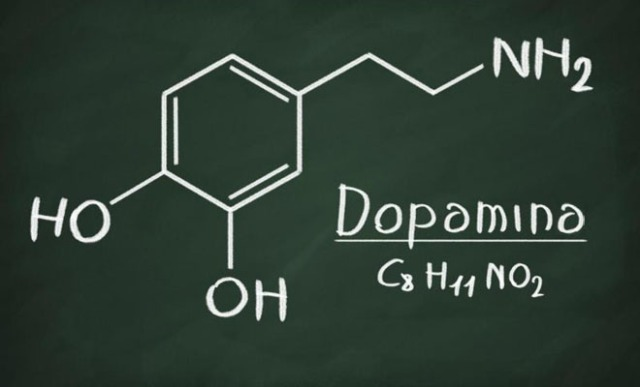 FOTO-1-DOPAMINA.jpg